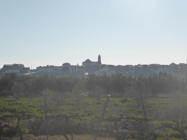 Valls-torre 08